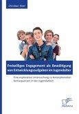 Freiwilliges Engagement als Bewältigung von Entwicklungsaufgaben im Jugendalter: Eine explorative Untersuchung zu konzeptionellen Konsequenzen in der Jugendarbeit