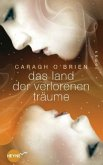 Das Land der verlorenen Träume / Gaia Stone Trilogie Bd.2