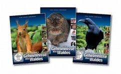 Geheimnisse des Waldes 1-3, 3 DVDs