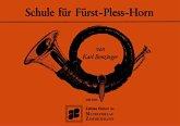 Schule für Fürst-Pless-Horn