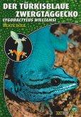 Art für Art: Der Türkisblaue Zwerggecko