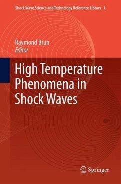 High Temperature Phenomena in Shock Waves