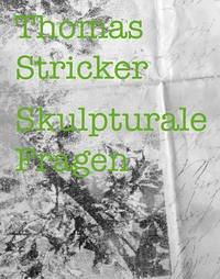 Thomas Stricker - Skulpturale Fragen