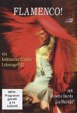 Flamenco!, 1 DVD