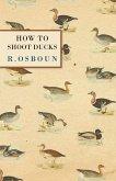 How to Shoot Ducks