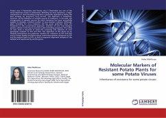 Molecular Markers of Resistant Potato Plants for some Potato Viruses