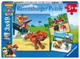Ravensburger 09239 - Paw Patrol auf vier Pfoten, 3 x 49 Teile Puzzle