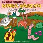 Warum haben Hasen lange Ohren?, 1 Audio-CD / Die kleine Schnecke, Monika Häuschen, Audio-CDs Folge.23