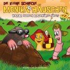 Warum buddeln Maulwürfe Hügel?, 1 Audio-CD / Die kleine Schnecke, Monika Häuschen, Audio-CDs Folge.22