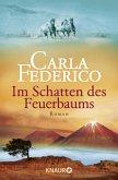 Im Schatten des Feuerbaums / Chile-Saga Bd.3