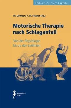 Motorische Therapie nach Schlaganfall - Dettmers, Christian; Stephan, Klaus Martin