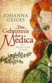 Das Geheimnis der Medica / Heilerin Anna Bd.1