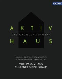 Aktivhaus - Das Grundlagenwerk - Hegger, Manfred; Fafflok, Caroline; Hegger, Johannes; Passig, Isabell