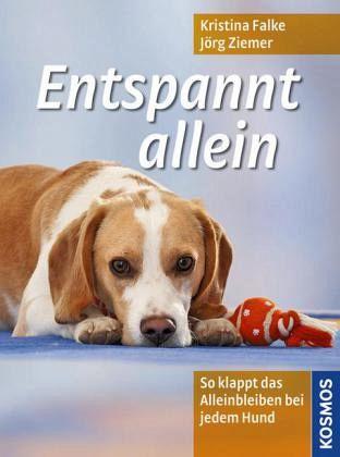 hundeerziehung allein: