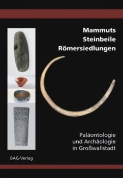 Mammuts . Steinbeile . Römersiedlungen