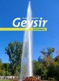 Naturschauspiel Geysir Andernach