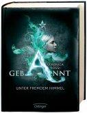 Gebannt - Unter fremdem Himmel / Aria & Perry Trilogie Bd.1