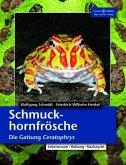 Schmuckhornfrösche
