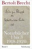 Notizbücher 1 bis 3 (1918-1920) / Notizbücher Volume II