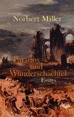 Paradox und Wunderschachtel