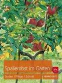 Spalierobst im Garten