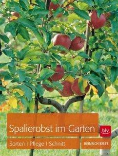 Spalierobst im Garten - Beltz, Heinrich