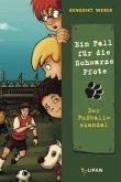Der Fußballskandal / Ein Fall für die Schwarze Pfote Bd.4