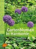 Gartenblumen in Harmonie