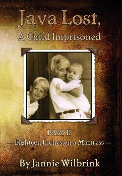 Java Lost, A Child Imprisoned - II