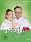 In aller Freundschaft - Die 12. Staffel, Teil 2, 18 Folgen DVD-Box