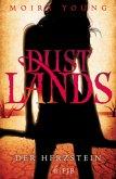 Der Herzstein / Dustlands Bd.2