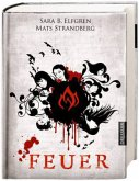 Feuer / Engelsfors Trilogie Bd.2