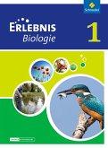 Erlebnis Biologie 1. Schülerband. Differenzierende Ausgabe. Niedersachsen