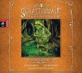 Der vergessene Ort / Schattenwald-Geheimnisse Bd.2 (MP3-Download)
