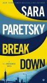 Breakdown: A V.I. Warshawski Novel