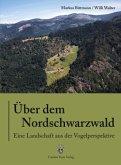 Über dem Nordschwarzwald