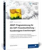 ABAP-Programmierung für die SAP-Finanzbuchhaltung - Kundeneigene Erweiterungen