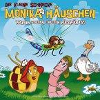 Warum fliegen Libellen rückwärts?, 1 Audio-CD / Die kleine Schnecke, Monika Häuschen, Audio-CDs Nr.25