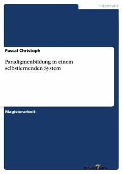 Paradigmenbildung in einem selbstlernenden System - Christoph, Pascal