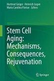 Stem Cell Aging: Mechanisms, Consequences, Rejuvenation