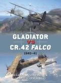Gladiator Vs Cr.42 Falco: 1940-41