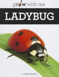 Ladybug - Riggs, Kate