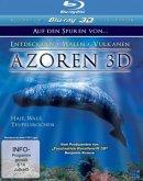 Azoren - Auf den Spuren von ... Entdeckern - Walen - Vulkanen: Haie, Wale, Teufelsrochen (Blu-ray 3D)