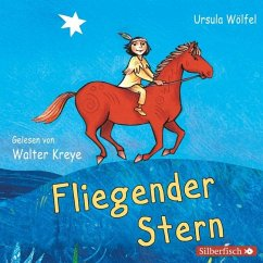 Fliegender Stern, 2 Audio-CDs - Wölfel, Ursula