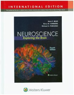 Neuroscience: Exploring the Brain - Bear, Mark F.; Connors, Barry W.; Paradiso, Michael A.