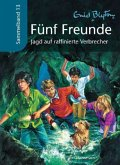 Jagd auf raffinierte Verbrecher / Fünf Freunde Sammelbände Bd.13