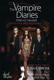 Nebel der Vergangenheit / The Vampire Diaries. Stefan´s Diaries Bd.4