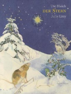 Der Stern / mini-minedition - Blaich, Ute; Litty, Julie