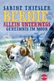 Geheimnis im Moor / Bernie allein unterwegs Bd.2