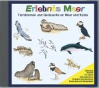 Erlebnis Meer, 1 Audio-CD